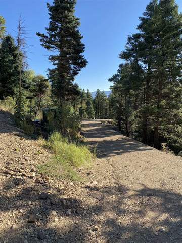lots 90  93 Taos Pines, Angel Fire, NM 87710 (MLS #107406) :: Chisum Realty Group