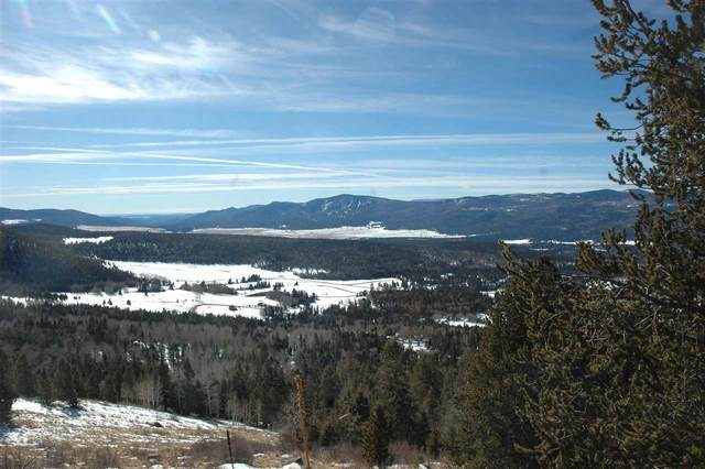 lot 87 El Camino Real, Angel Fire, NM 87710 (MLS #107443) :: Chisum Realty Group