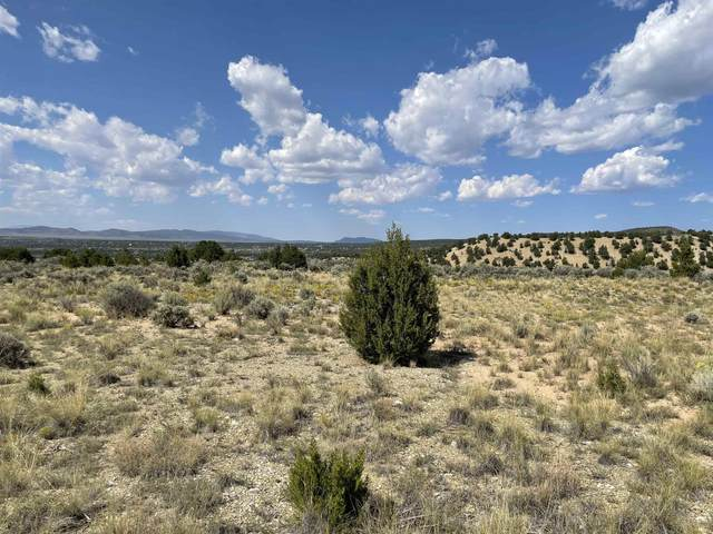 Lot 21 Sandia Canyon Road, Arroyo Hondo, NM 87534 (MLS #107525) :: Chisum Realty Group