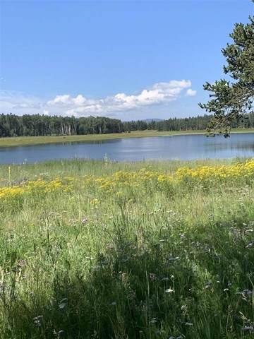 Lot 50 AandB Hidden Lake Circle, Angel Fire, NM 87710 (MLS #107530) :: Chisum Realty Group