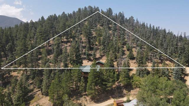 Timbercrest Trail, Red River, NM 87558 (MLS #107583) :: Chisum Realty Group