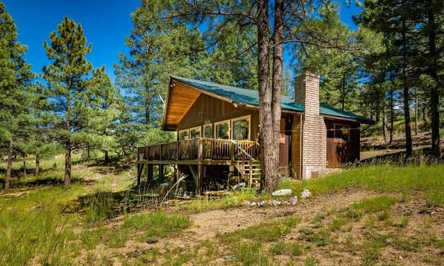 24 Eagle Lane, Ute Park, NM 87749 (MLS #107605) :: Chisum Realty Group