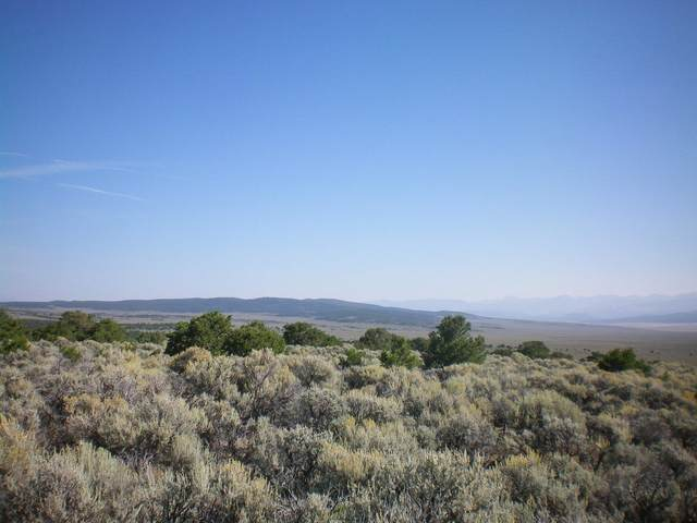 Off Of Ventero County Rd, Amalia, NM 87512 (MLS #107642) :: Chisum Realty Group