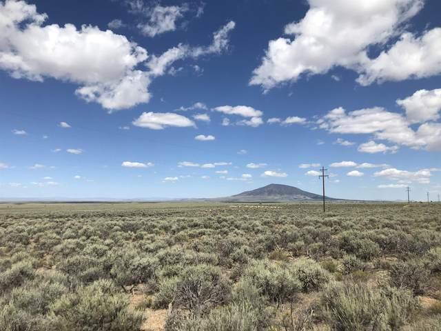 Off Arkay Ranch Rd, Cerro, NM 87519 (MLS #107714) :: Page Sullivan Group