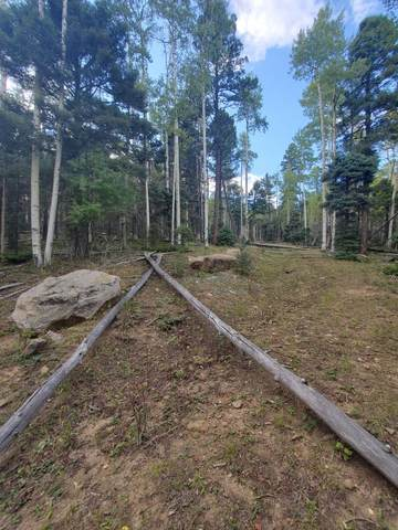 Lot 144 Brazos, Angel Fire, NM 87710 (MLS #107813) :: Coldwell Banker Mountain Properties