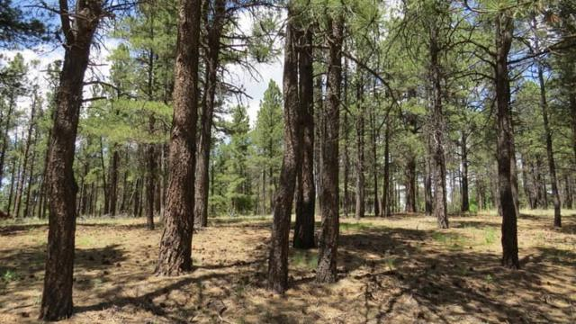 Lot 2 Halo Pines Terrace, Angel Fire, NM 87710 (MLS #92600) :: Angel Fire Real Estate & Land Co.