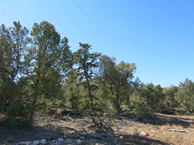 35 Servilleta Lot 35, Tres Piedras, NM 87577 (MLS #94407) :: The Chisum Realty Group
