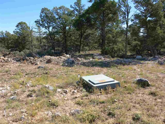 49 Servilleta Lot 49, Tres Piedras, NM 87577 (MLS #94411) :: The Chisum Realty Group