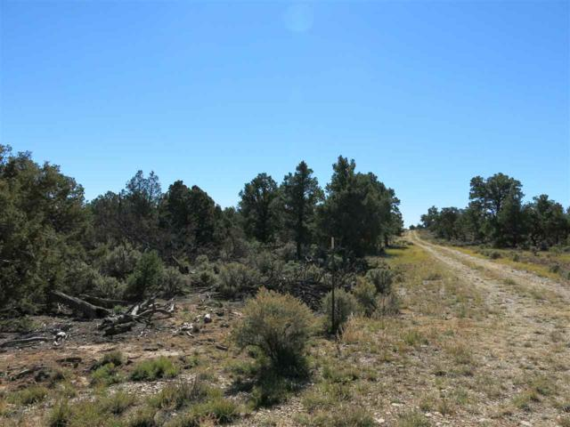 58 Servilleta Lot 58, Tres Piedras, NM 87577 (MLS #94416) :: Page Sullivan Group | Coldwell Banker Mountain Properties