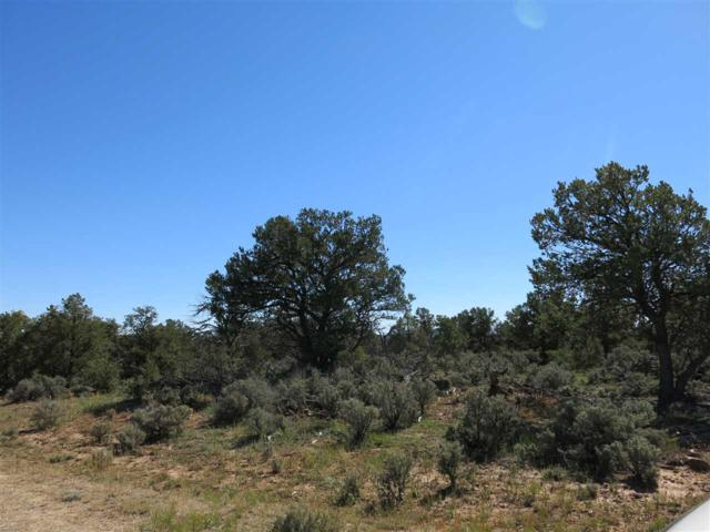 60 Servilleta Lot 60, Tres Piedras, NM 87577 (MLS #94424) :: Angel Fire Real Estate & Land Co.
