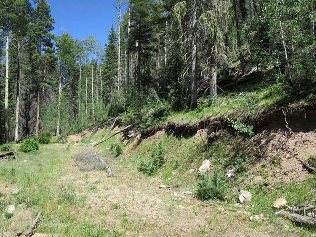 Lot 43 Mountain Shadows, Red River, NM 87558 (MLS #95591) :: Angel Fire Real Estate & Land Co.