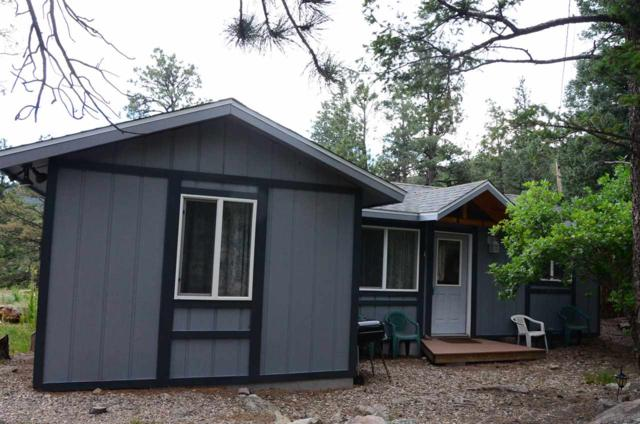 43 Jaybird Lane, Ute Park, NM 87749 (MLS #96929) :: Page Sullivan Group | Coldwell Banker Lota Realty