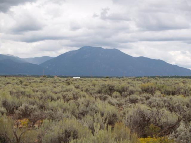 Tune Drive Lot 14, Arroyo Hondo, NM 87514 (MLS #97547) :: Angel Fire Real Estate & Land Co.