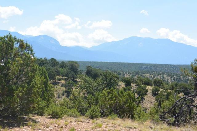xx Duval Road, Taos, NM 87571 (MLS #97761) :: Page Sullivan Group | Coldwell Banker Lota Realty