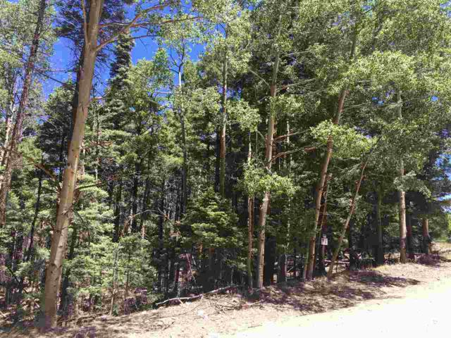 Lot 14 Chalet 4, Angel Fire, NM 87710 (MLS #98163) :: Page Sullivan Group | Coldwell Banker Mountain Properties
