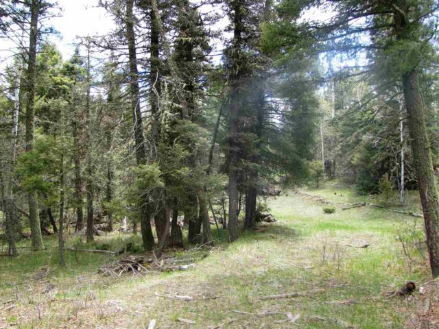 Lot 35 Taos Pines, Angel Fire, NM 87710 (MLS #98388) :: Page Sullivan Group | Coldwell Banker Lota Realty
