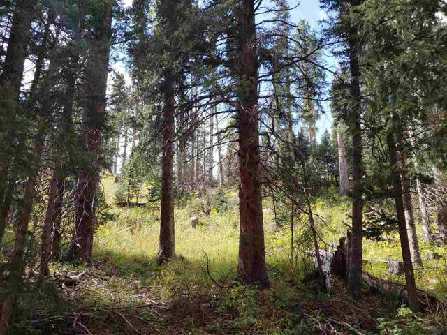 Hidden Valley, Red River, NM 87558 (MLS #98588) :: Angel Fire Real Estate & Land Co.