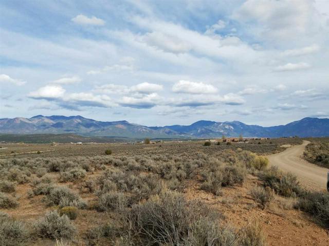 off Coyote  Loop, Taos, NM 87571 (MLS #99226) :: Page Sullivan Group   Coldwell Banker Lota Realty