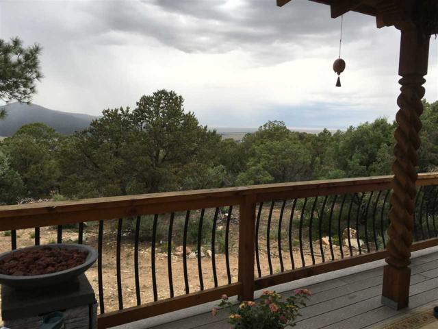 69 Upper Pinabette Rd, Questa, NM 87556 (MLS #99231) :: Page Sullivan Group | Coldwell Banker Lota Realty