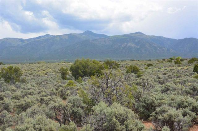xx Cavalry Camp Road, Taos, NM 87571 (MLS #99302) :: The Chisum Realty Group