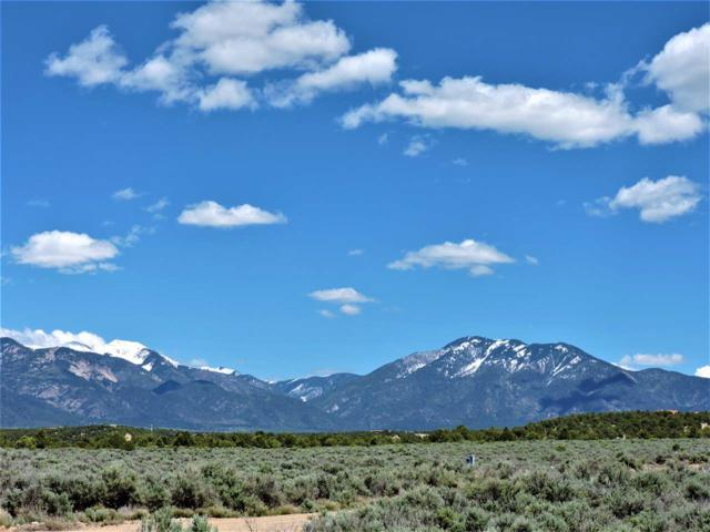 xxx Los Rios, Arroyo Hondo, NM 87513 (MLS #99810) :: Angel Fire Real Estate & Land Co.