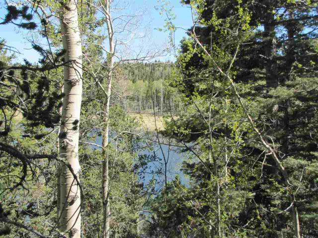 Lot 60 A&B Hidden Lake Circle, Angel Fire, NM 87710 (MLS #99902) :: Page Sullivan Group | Coldwell Banker Lota Realty