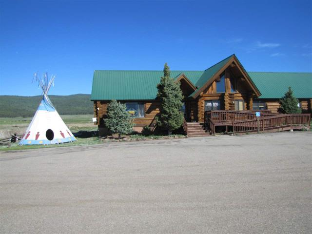 27585 Highway 64, Angel Fire, NM 87710 (MLS #100052) :: The Chisum Realty Group