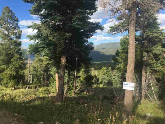 Lot 110 Zia Road, Angel Fire, NM 87710 (MLS #100519) :: Page Sullivan Group | Coldwell Banker Lota Realty