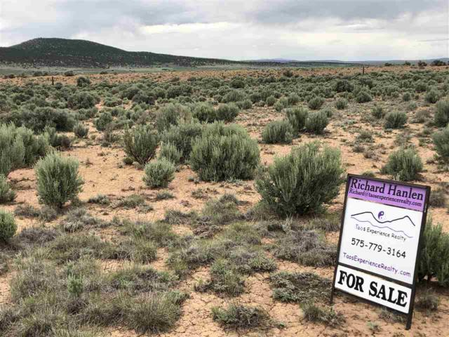 14 Fork Road, Tres Piedras, NM 87577 (MLS #101029) :: Angel Fire Real Estate & Land Co.