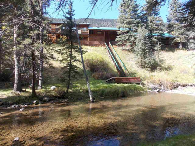 96 Valley Of The Pines, Red River, NM 87558 (MLS #101829) :: Page Sullivan Group | Coldwell Banker Mountain Properties