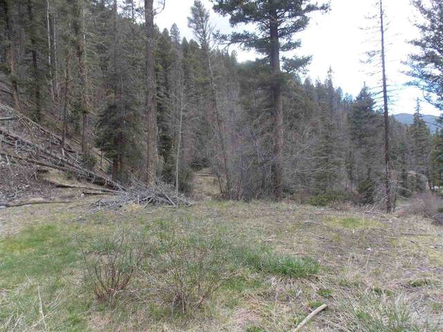 Highway 578, Red River, NM 87558 (MLS #103334) :: Angel Fire Real Estate & Land Co.