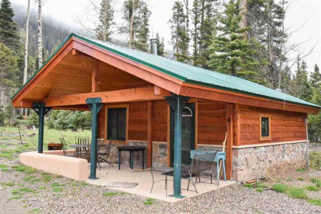 562 Highway 578, Red River, NM 87558 (MLS #103450) :: Angel Fire Real Estate & Land Co.