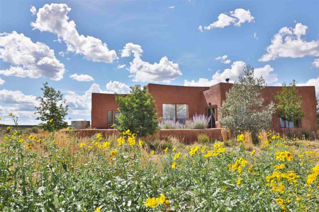 30 Ravens Road, Tres Piedras, NM 87577 (MLS #103879) :: Page Sullivan Group | Coldwell Banker Mountain Properties
