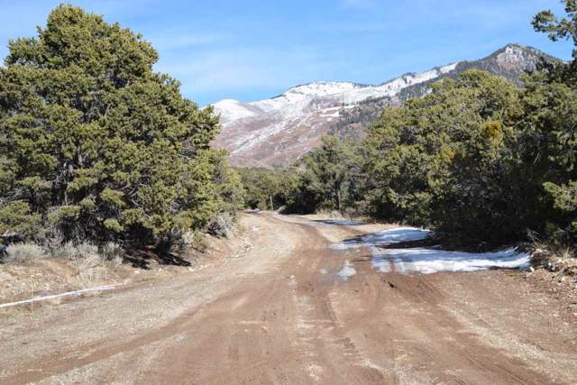 Camino Del Medio, San Cristobal, NM 87564 (MLS #104511) :: Page Sullivan Group
