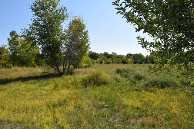 183 County Road 41, Alcalde, NM 87511 (MLS #105941) :: Chisum Realty Group