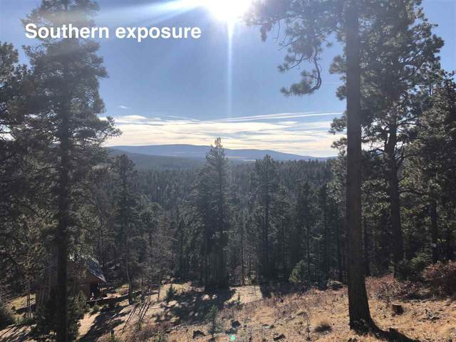 Taos Drive, Angel Fire, NM 87710 (MLS #106145) :: Page Sullivan Group