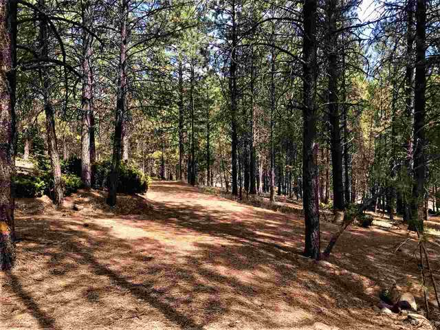 26904 Hwy 64, Taos Canyon, NM 87571 (MLS #106602) :: Berkshire Hathaway Home Services