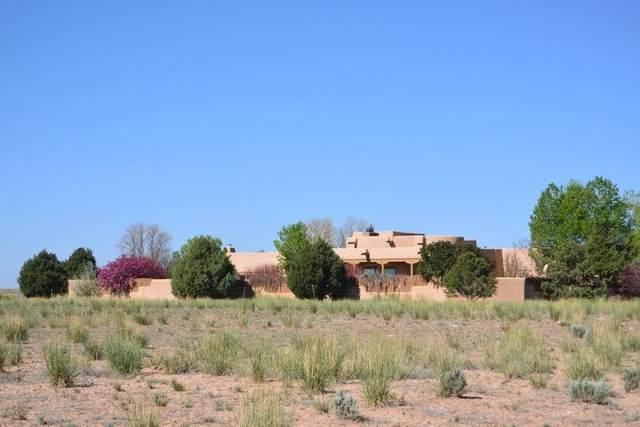 24070 Highway 64W, El Prado, NM 87529 (MLS #106785) :: Page Sullivan Group