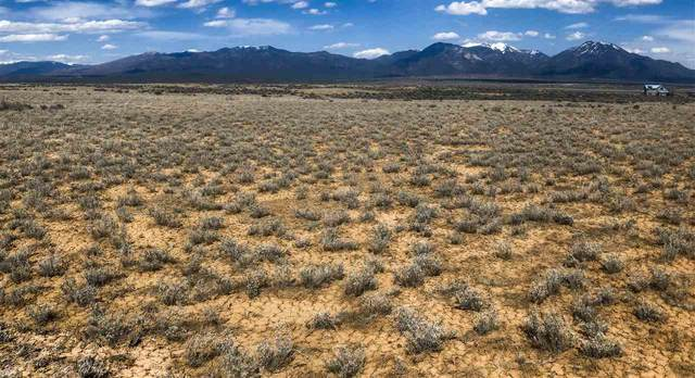 Tract 6A Fremont Drive Bald Eagle Subd, El Prado, NM 87529 (MLS #106797) :: Chisum Realty Group