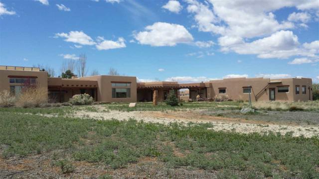 346 Taos Mountain Lane, Taos, NM 87571 (MLS #98152) :: Page Sullivan Group | Coldwell Banker Lota Realty