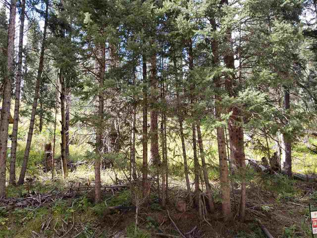 Hidden Valley, Red River, NM 87558 (MLS #98588) :: Page Sullivan Group