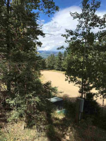 Lot 147 Back Basin Rd, Angel Fire, NM 87710 (MLS #99177) :: Page Sullivan Group | Coldwell Banker Lota Realty