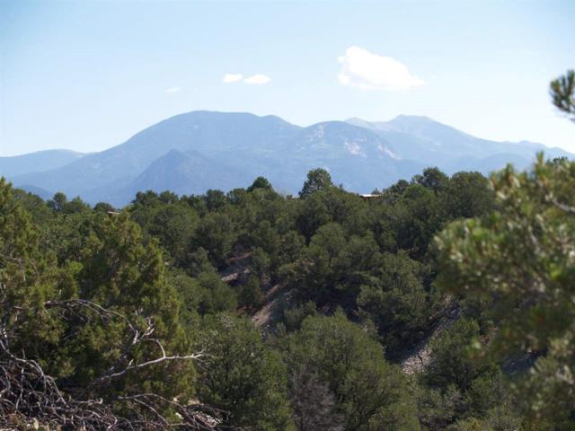 Altilla Road, Arroyo Hondo, NM 87513 (MLS #98216) :: Page Sullivan Group | Coldwell Banker Lota Realty