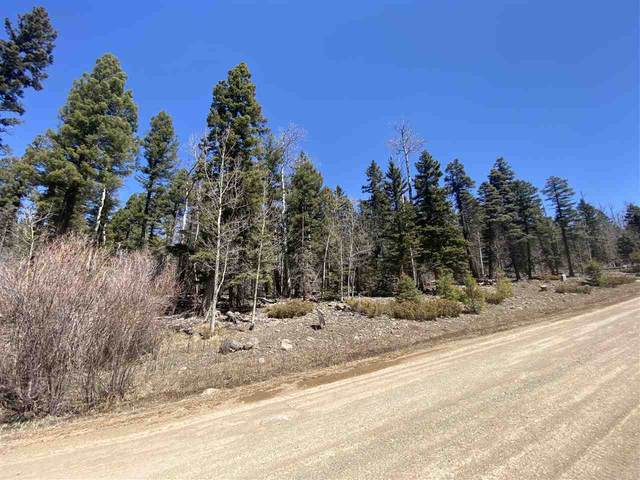 Lot 1113 El Camino Real, Angel Fire, NM 87710 (MLS #104808) :: Angel Fire Real Estate & Land Co.
