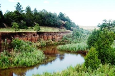 Off Hwy 120, Ocate, NM 87734 (MLS #100098) :: Page Sullivan Group