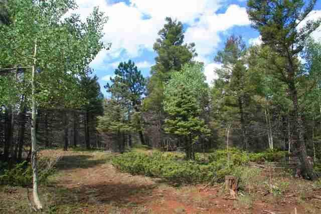 302 South Vail Overlook, Angel Fire, NM 87710 (MLS #100203) :: Page Sullivan Group | Coldwell Banker Lota Realty