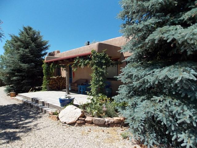 308 Chamisa Road, Taos, NM 87571 (MLS #100205) :: Page Sullivan Group | Coldwell Banker Lota Realty