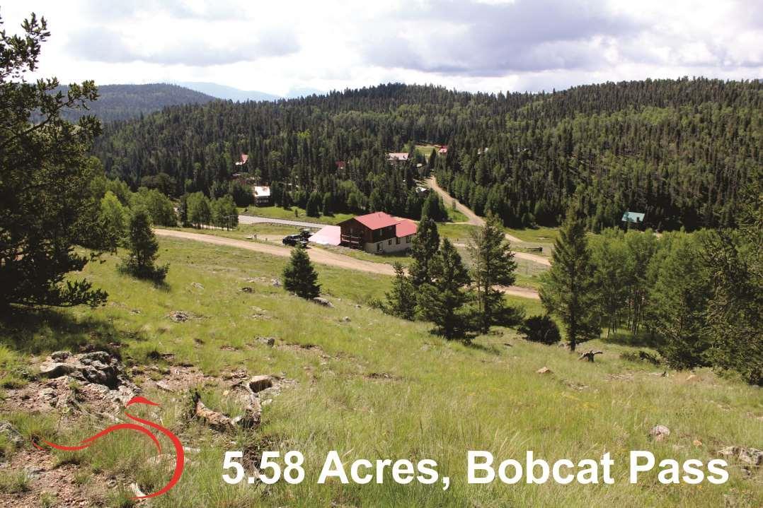 Bobcat Pass - Photo 1