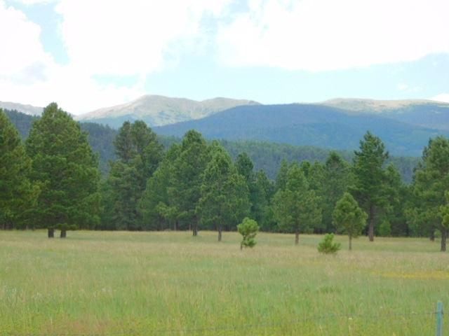 26 Windy Hill Rd, Eagle Nest, NM 87718 (MLS #100512) :: The Chisum Group