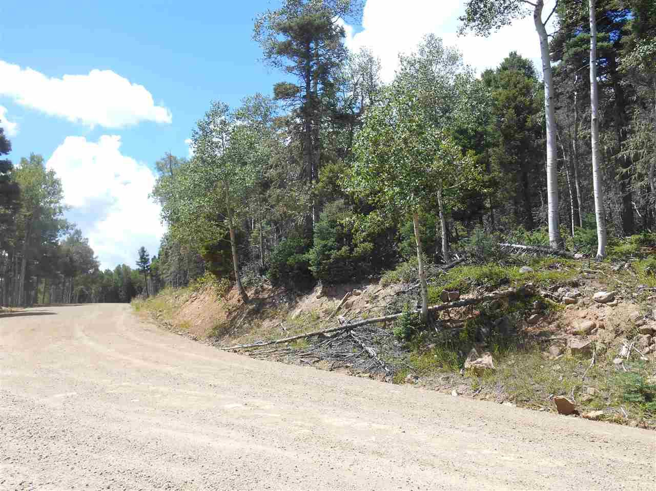 Lot 1461 Peralta Drive - Photo 1